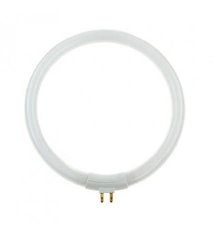 Bec pentru lampa cu lupa T4 12W Kemot