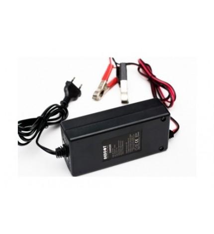 Incarcator acumulatori stationari Reddot 12V, 90-120Ah, DD-120-100-D